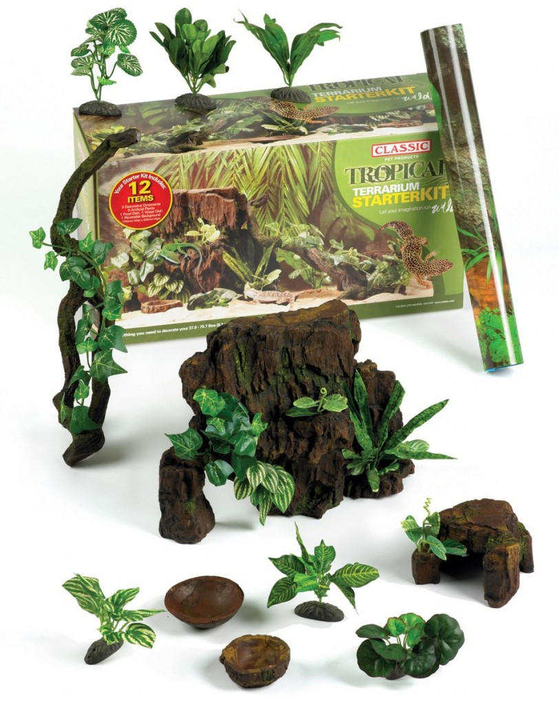 Classic Terrarium Tropical Starter Kit