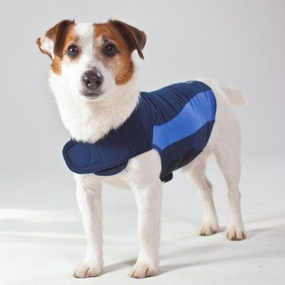 Blue Polo ThunderShirt Anxiety Relief Dog Calming Vest