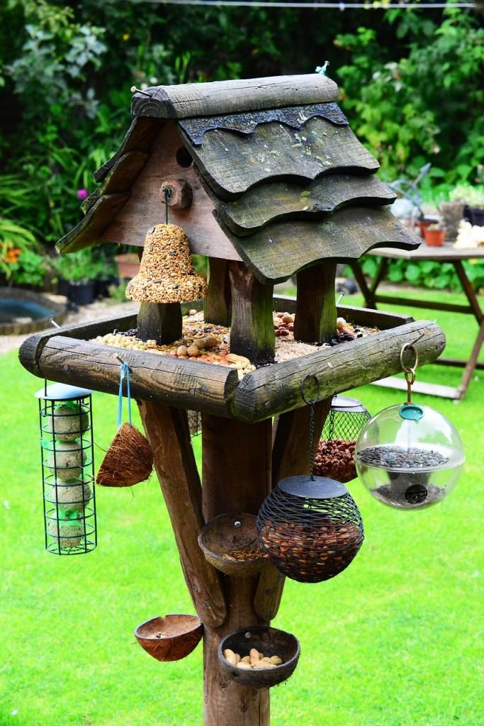 bird-house-440180_1280