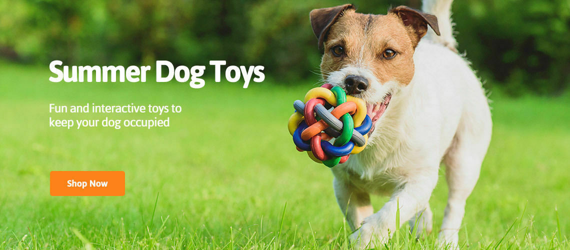 summer fun dog toys