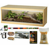Pet Express Bronze Bearded Dragon Starter Kit