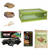 Corn Snake Starter Kit - Medium Vivarium Green (24
