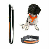 Winter Glow In The Dark Dog Lead/Harness/Collar Bundle