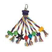 Parrot Toy Carnival Medium Large