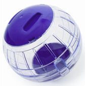 Pennine Giant Exercise Playball 25cm