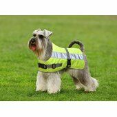 Petlife Flecta Hi Vis Water-resistant Dog Jacket