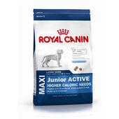 Royal Canin Maxi Junior Active Large Breed Puppy Food