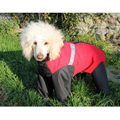 Dog Trouser Suit- Extreme Red