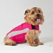 Pink Polo ThunderShirt Anxiety Relief Dog Calming Vest