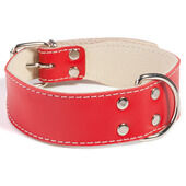 Doggy Things Bull Leather Dog Collar - Red