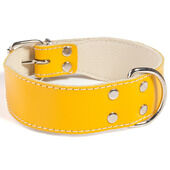 Doggy Things Bull Leather Dog Collar - Yellow
