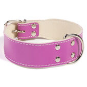 Doggy Things Bull Leather Dog Collar - Plum