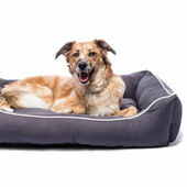 Dog Gone Smart Lounger Bed Pebble Grey