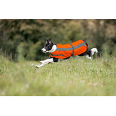 Petlife Flecta Hi Vis Dog Jacket Orange