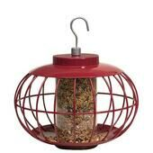 The Nuttery Classic Squirrel Proof Chinese Lantern Seed Feeder V2 Red