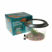 Gussie Goldfish Bowl Starter Kit