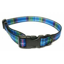 Dog Collars & Leads