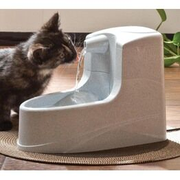 Automatic Cat Feeders & Water Fountains