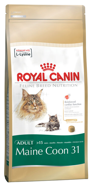 royal canin maine coon 31 adult dry cat food from. Black Bedroom Furniture Sets. Home Design Ideas