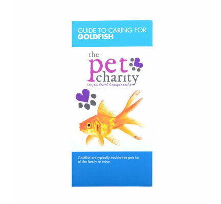 Goldfish Care Guide