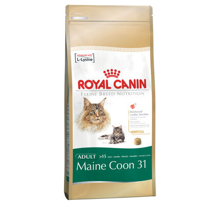 Royal Canin Maine Coon 31 Adult Dry Cat Food
