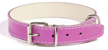 Doggy Things Plain Leather Dog Collar - Plum