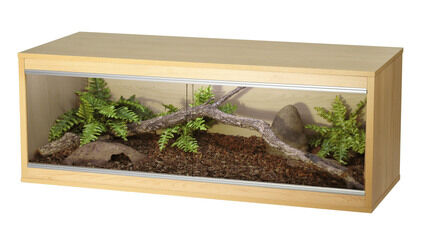 Vivexotic Repti-Home Large Vivarium - Beech