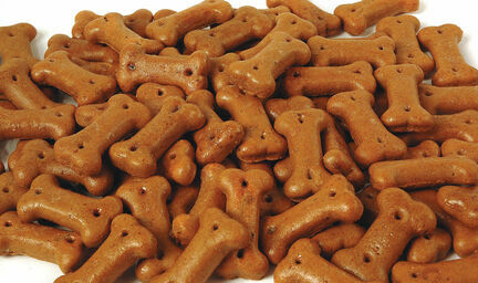 Pointer Gravy Bones Beef Dog Biscuits